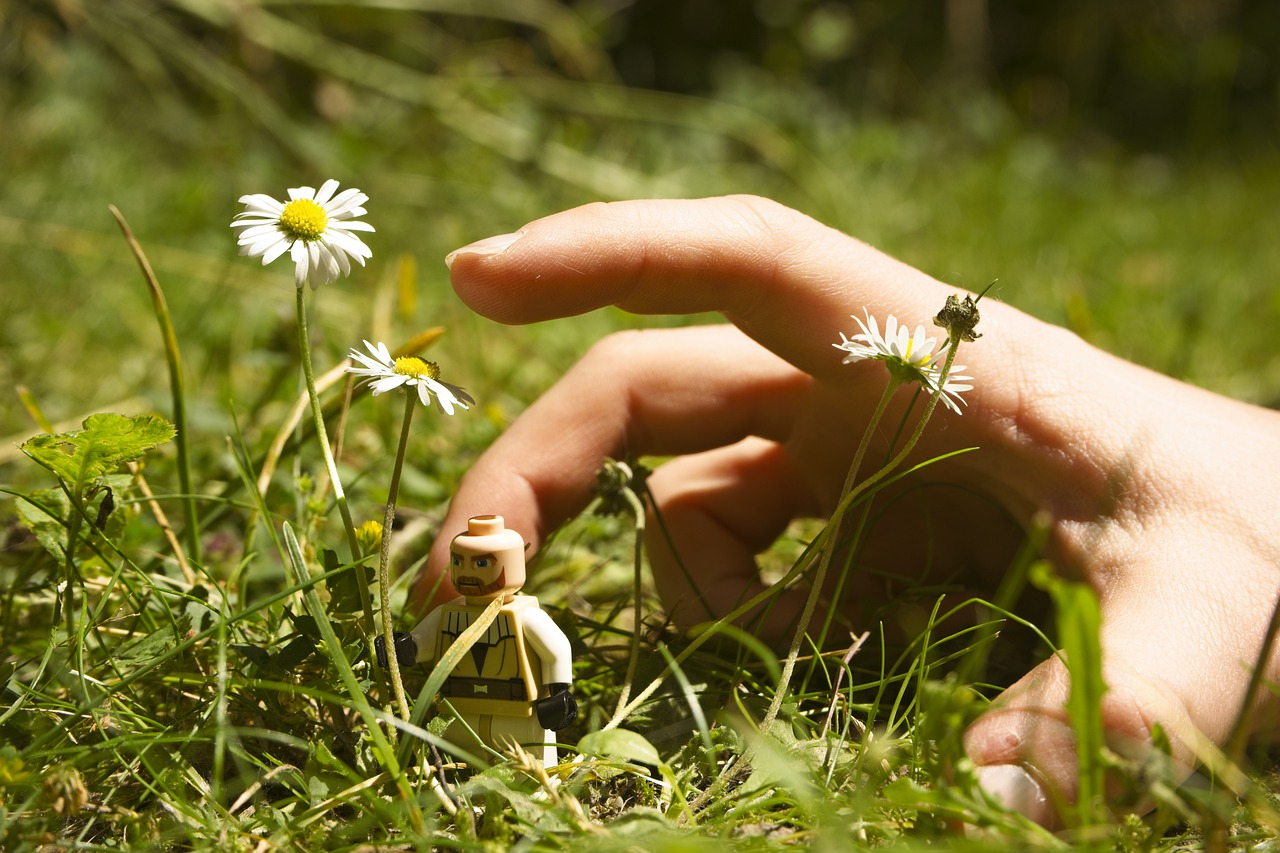 lego, hand, flower